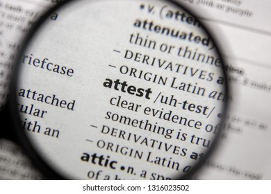 The word or phrase attest in a dictionary.