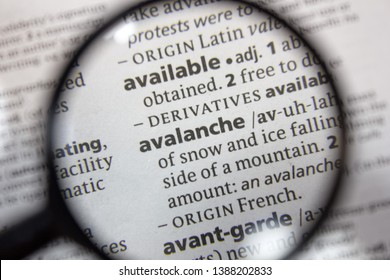 The word of phrase avalanche in a dictionary.