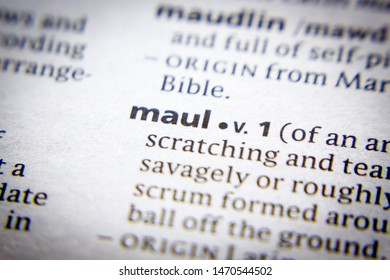 Maule Images, Stock Photos & Vectors | Shutterstock