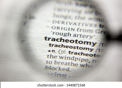 The word or phrase Tracheotomy in a dictionary