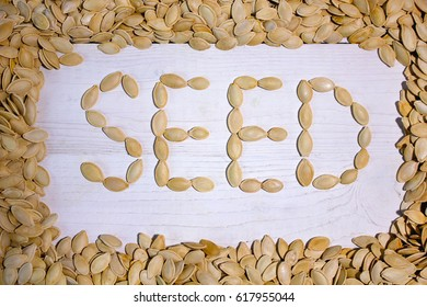 Word seed in the frame made of pumpkin seeds, top view