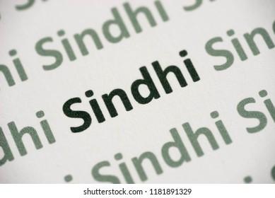 word Sindhi language printed on white paper macro