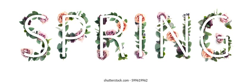 Word Spring on the leaves and rose flowers background. Stylish photo inscription.