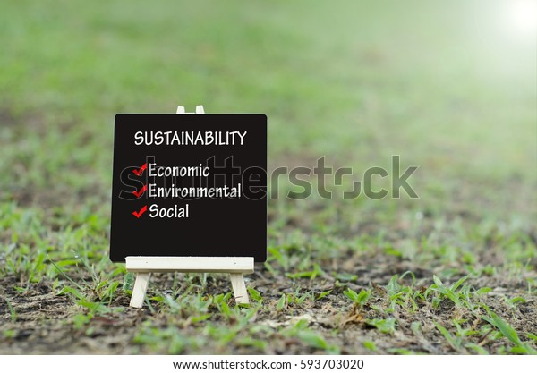 word sustainability, economic, environmental and social on wooden easel with flare effects