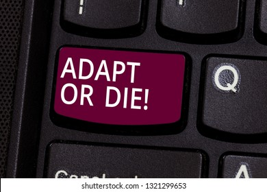 Word writing text Adapt Or Die. Business concept for Be flexible to changes to continue operating your business Keyboard key Intention to create computer message pressing keypad idea.