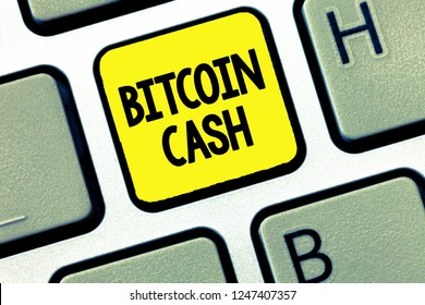 Word writing text Bitcoin Cash. Business concept for Type of cryptocurrency Blockchain Digital money business