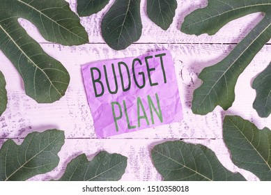 Word writing text Budget Plan. Business concept for financial schedule for a defined period of time usually year.