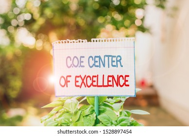 Word writing text Coe Center Of Excellence. Business concept for being alpha leader in your position Achieve Plain empty paper attached to a stick and placed in the green leafy plants.