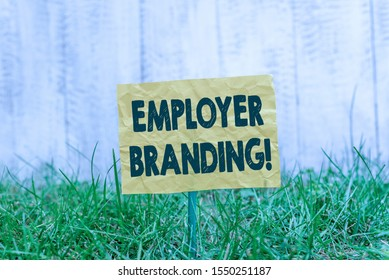 Word writing text Employer Branding. Business concept for promoting company employer choice to desired target group Plain empty paper attached to a stick and placed in the green grassy land.