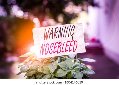 Word writing text Warning Nosebleed. Business concept for caution on bleeding from the blood vessels in the nose Plain empty paper attached to a stick and placed in the green leafy plants.