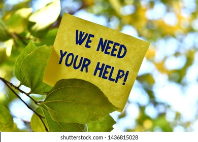 Word writing text We Need Your Help. Business concept for asking someone to stand with you against difficulty Piece of square paper use to give notation on tree leaf under sunny day.