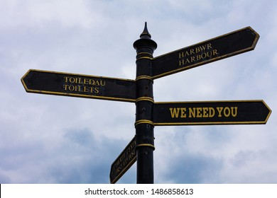 Word writing text We Need You. Business concept for to fulfill the needs of the assignment duty or obligation Road sign on the crossroads with blue cloudy sky in the background.