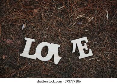 Wording love in pine forest ,broken heart concept