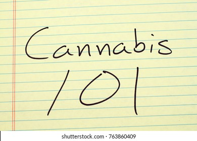 "The words ""Cannabis 101"" on a yellow legal pad"