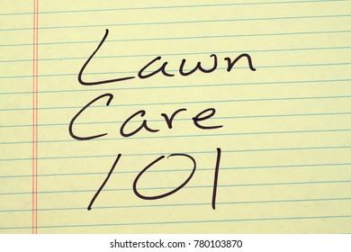 "The words ""Lawn Care 101"" on a yellow legal pad"