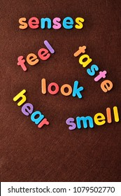 The words senses, feel, taste, look, hear and smell on a brown background