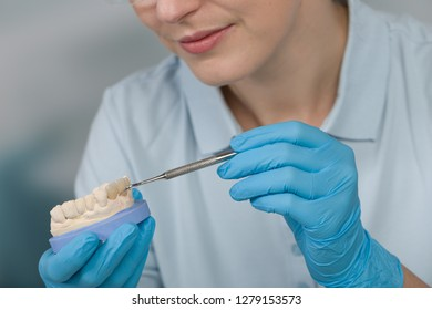 work at dental imprint with artificial dentition in a dental laboratory