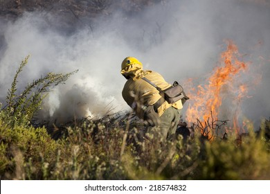 Work extinguishing forest fires