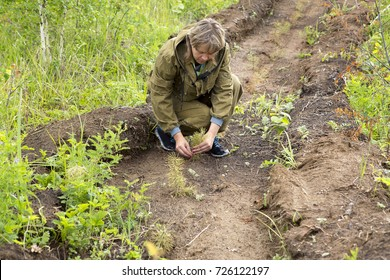 Work of foresters on restoration of forest. Foresters planted seedlings and take care of them on a farm for growing trees in the Siberian taiga.