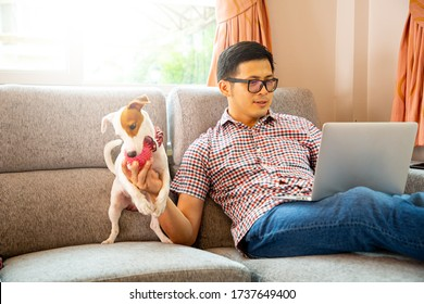 Work from home.Asian poeple working and checking document with laptop and play with his dog in the office.