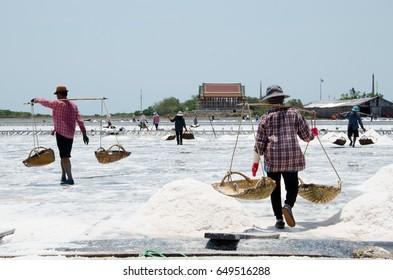 work in salt farm