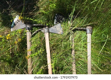 Work in the woods, tools of workers when planting trees - ax and hoe