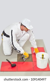Worker Applies Tile Adhesive with Notched Trowel Tile on a Floor before tilling
