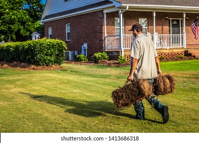 Worker carrying two bales of pinestaw across the yard at a residential property in front of a home