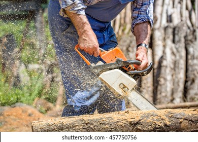 Worker with chainsaw cutting wood