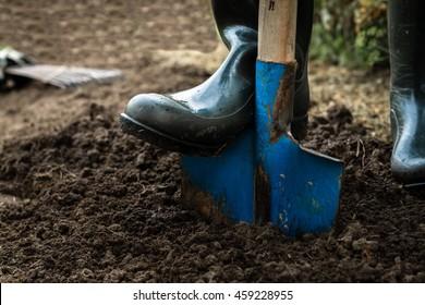 Arbeiter graben den schwarzen Boden mit Schaufel im Gemüsegarten, der Mensch löst Schmutz im Bauernhof, Landwirtschaft und hartes Arbeitskonzept