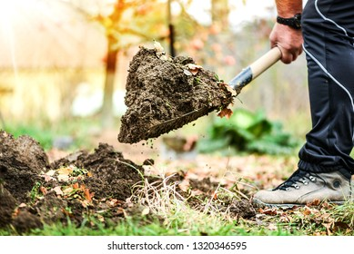 Worker digs soil with shovel in colorfull garden, workers loosen black dirt at farm, agriculture concept autumn detail. Man boot or shoe on spade prepare for digging. Focus on brown ground.