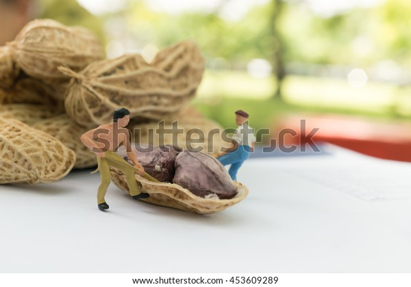 Worker figures work on peanuts.