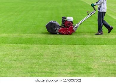 Worker guy shake pour grass from lawn mower bag into wheelbarrow. Garden meadow lawn cutting. Summer works in garden.