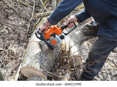 Worker hands with Petrol Chainsaw Cutting Trees. Man with Gasoline Petrol Chain Saw Tree Cutting Outdoor.