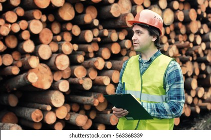 Worker in helmet counts wood lumber