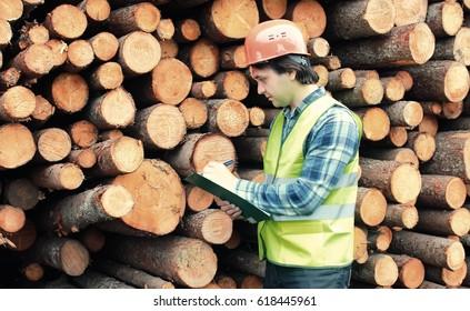 Worker in helmet counts wood lumber