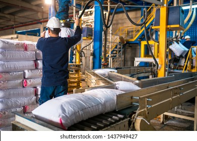 Worker loading Rows or stacks of white sack bags at large warehouse in modern factory. Packaging in factory or warehouse