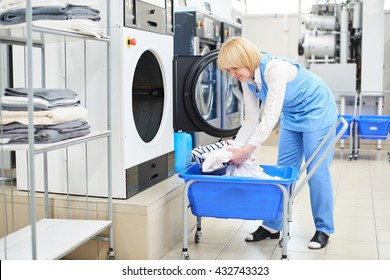 The worker loads the Laundry clothing into the washing machine