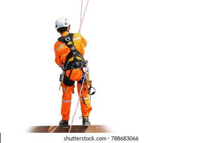 worker man wear safety harness copy space on white background