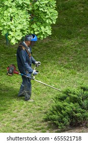 Worker mows the grass in the yard