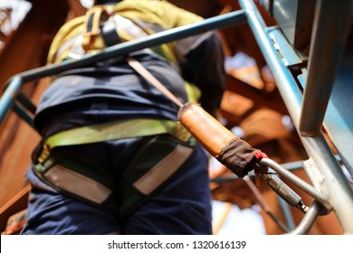 Worker on Elevating Work Platform  wearing fall arrest harness using locking Karabiner which attached with shock absorber lanyard safety device clipping into anchorage onside of the basket