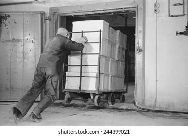 Worker pushes a heavy cart of packed eggs into a cold storage warehouse, Jersey City, New Jersey in April 1939.