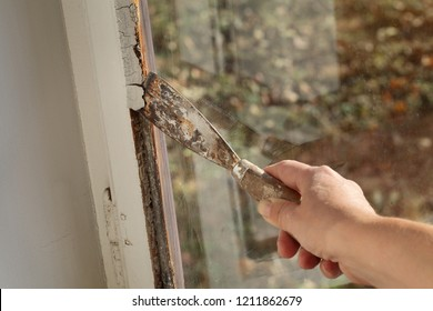 Worker removing oil window glazing putty using putty knife tool, old window restoration