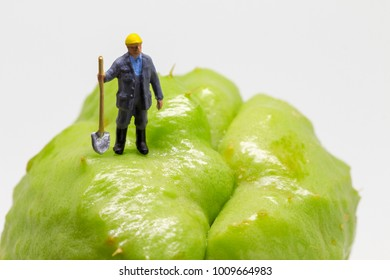 Worker with shovel on exotic fruit relief. Tropical fruit rough surface. Garden worker figurine on rough terrain. Digging ditch. Road worker job scene macro photo. Worker in helmet with shovel model