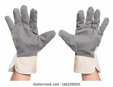 Worker showing gesture - open palm and five fingers. Male hands wearing working glove, isolated on white background.