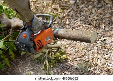 Worker using chainsaw on wood