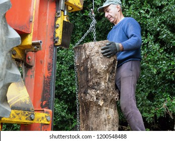 worker using hydraulic log splitting machine attached to a tractor the machine is being used to split large wooden logs