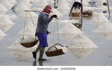 Worker using wooden baskets to carrying salt to keep at warehouse, Harvesting sea salt in Thailand