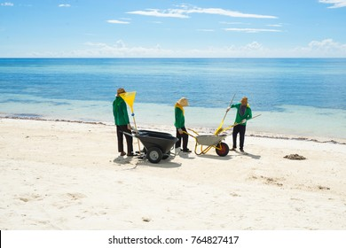 Workers cleaning beach from garbage.