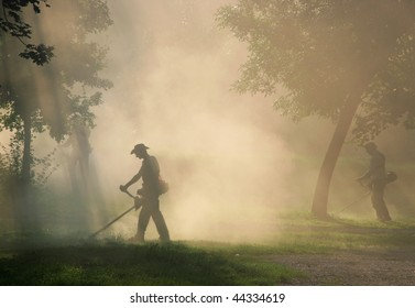 Workers cut the grass with strimmer in dust